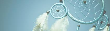 Dream Catcher Foundation Home The Dreamcatcher Foundation Specializing in antihuman 69