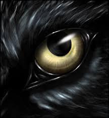 wolf eyes in the dark. Brilliant Dark Wolfu0027s Eye By DarkSheyn  Throughout Wolf Eyes In The Dark