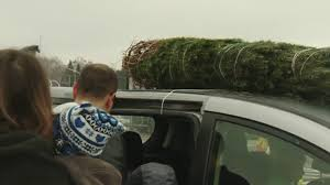 Image result for free christmas tree on top of car