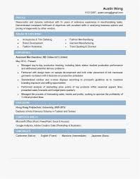 22 Merchandiser Resume Template Best Resume Templates