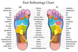 Trigger Points Foot Chart Reflexology 4life Massage