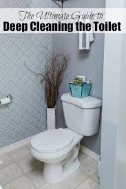 awesome tips to really get your toilet cleaned and disinfected cleanandscentsible com