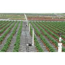 Elite Crop Drip Irrigation System Rs 1000 Bundle Elite Agro