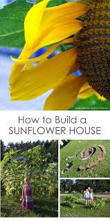 build a sunflower house with kids