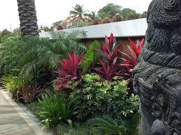 Modern Tropical Garden Design Made Wijaya Baoase Resort Curaçao Design By Roel Van Heeswijk