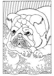 Kleurplaat Puppy Afb 28203 Images