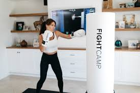 a full studio boxing gym in your home