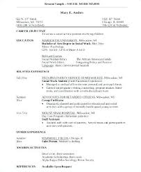 Examples Of Social Work Resumes Sample Social Work Resume Examples