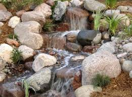 Small Picture Water garden design landscape ontariocom Green for Life