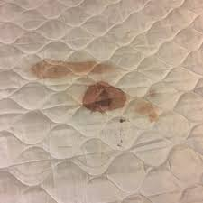 stained mattress. Exellent Stained Photo Of Sheraton Indianapolis City Centre Hotel  Indianapolis IN United  States Blood On Stained Mattress