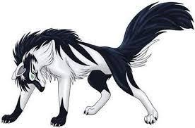 white wolf drawing anime. Modren White White And Black Anime Wolf Wolf Drawing Art Animal Drawings Intended Drawing L