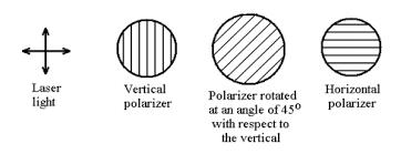 Quantum Venn Diagram Paradox
