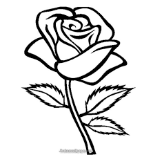 600x745 drawn red rose head 658x671 flower coloring printables color bros