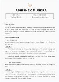 Free Professional Resume Template Professional Cv Format Doc