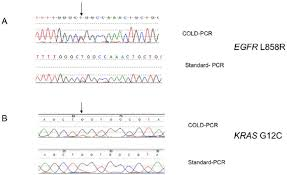 khalid tobal coventry university coventry cu researchgate examples of comparative analysis of cold pcr vs standard pcr