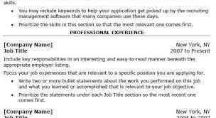 Resume Free Professional Resume Writers Appealing Freelance