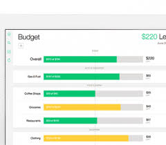 Free Budget Form Impressive Mint Money Manager Bills Credit Score Budgeting