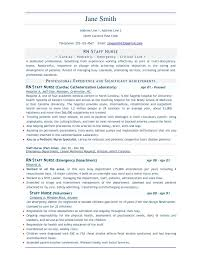 Free Resume Creator Download Professional Free Resume Templates Complete Guide Example 38
