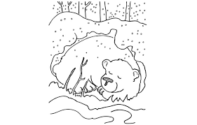Small Picture birthday bear birthday bear coloring page sleeping bear coloring