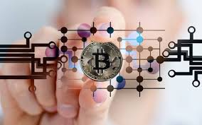 The economist who predicted the 2008 financial crash has warned american politicians that bitcoin is the mother of all scams during a senate hearing on cryptocurrency. Economics Page 6 The Barcelona Gse Voice