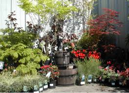 Plant Displays Images - Best idea home design - extrasoft.us