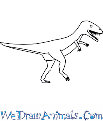 carcharodontosaurus size how to draw a carcharodontosaurus