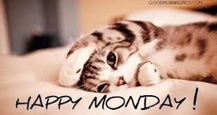 Image result for happy monday pictures