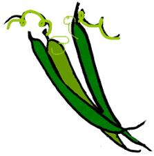 green beans clip art. Brilliant Art Free String Bean Cliparts Download Clip Art Art On Clipart  Library And Green Beans D
