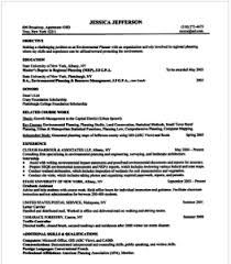 chronological resume example sample of the resume