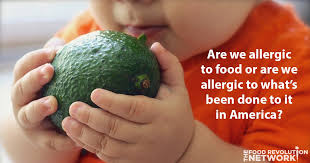 Food Allergies in America Continue to Rise: Are We Allergic to Food ...