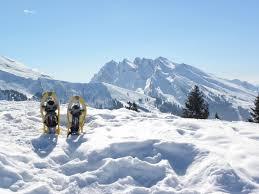 """Résultat de recherche d'images pour """"raquette neige"""""""