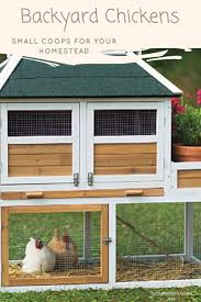 Chicken Coop Designs For 6 Hens Small Coops For Your Backyard Chickens Perfect For Your