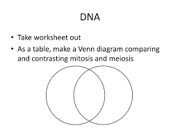 Venn Diagram Comparing Meiosis And Mitosis Ppt Dna Powerpoint Presentation Id 2367050