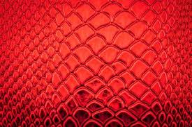 red snake skin wallpaper. Fine Red Red Exotic Snake Skin Pattern As A Wallpaper Stock Photo  50997183 With Skin Wallpaper K