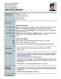 15 Cv Format For Job Example College Resume