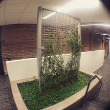 cool stuff for your office. wellnesswednesday tip incorporate plants into your office design whenever possible for lower stress and cool stuff e