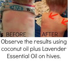 Lavender | Mommy Lives Clean
