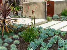 Modern plants for landscaping australia landscape contemporary with hilly  terrain house numbers garden lighting