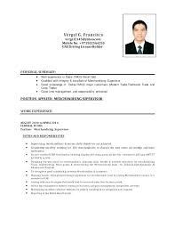 Merchandising Job Description Merchandiser Job Description Resume 8