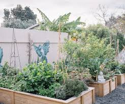 when is comes to vegetables may is all about your leafy greens use our quick gardening guide on what to harvest plant and sow to make the most of this