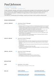 Project Manager Resume Samples Templates Visualcv