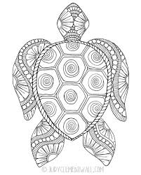 coloring pages gorgeous sea turtle coloring page turtle coloring pages