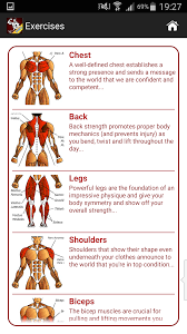 Muscle Gain Workout Chart Amazon Com Mega Muscle Gain Workout Free Appstore For Android