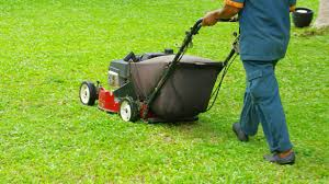 complete guide to lawn care