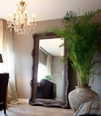 living room palms palm species gold fruit palm tree large