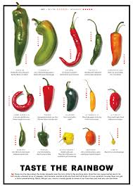 Chile Chart Stuffed Peppers Cooking Peppers Stuffed Hot