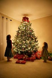 beautiful christmas decorations. Most Seen Ideas In The Fascinating Christmas Tree Design For December, 25th Beautiful Decorations E