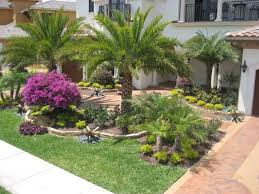 Small Picture 106 best Front Yard Florida images on Pinterest Landscaping