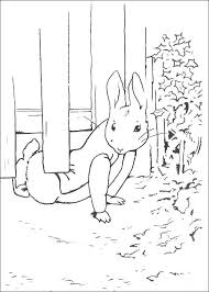 New Peter Rabbit Coloring Pages