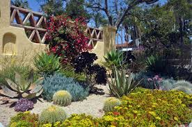 Small Picture Xeriscape Plants San Diego Water wise Landscape Gardening California
